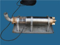 耐海水搶險泵