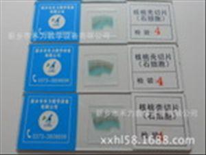 生物细胞切片
