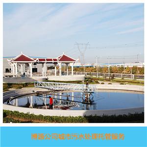 电子工业废水处理阴离子聚丙烯酰胺APAM