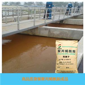 洗煤废水澄清剂阳离子聚丙烯酰胺CPAM