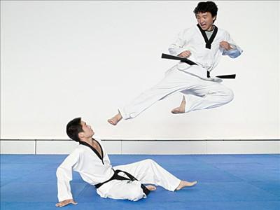 跆拳道服、柔道服專用面料