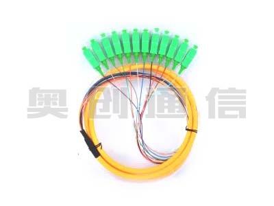 12芯束状尾纤-SC/APC