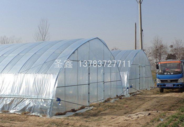 鍍鋅管蔬菜大棚