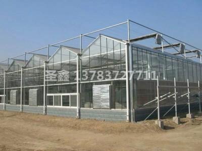 上海玻璃溫室工程案例
