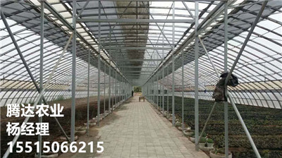 優質養殖大棚