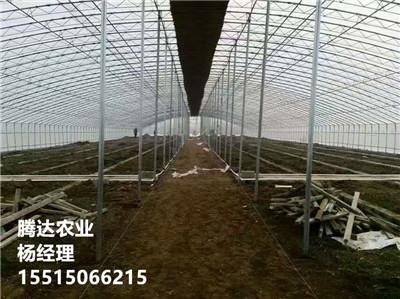溫室大棚建設