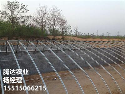 幾字鋼溫室大棚