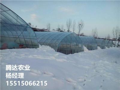 15米養殖大棚