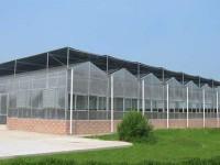 怎么更好的对连栋温室进行管理?