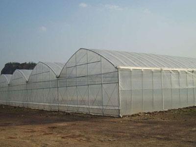 温室大棚造价