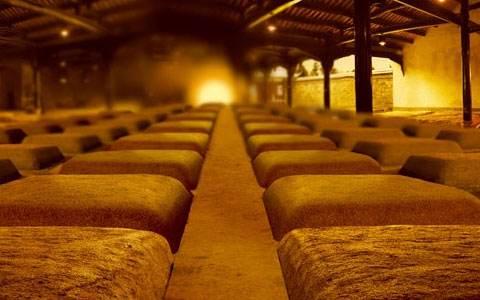 先進的釀酒設備是白酒企業特色實力的標志