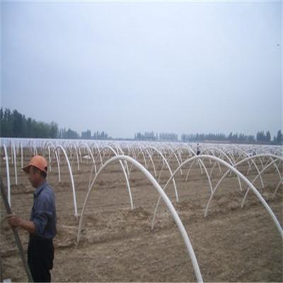 景龙供应蔬菜大棚/花棚阳光房玻璃钢骨架/玻璃钢拉挤型材