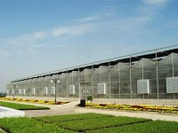 连栋温室种植更方便