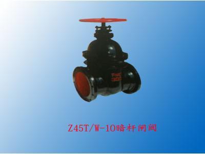 Z45TW-10暗杆闸阀