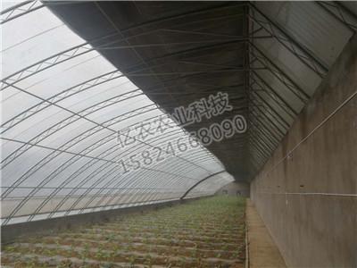温室亚虎国际老虎机APP