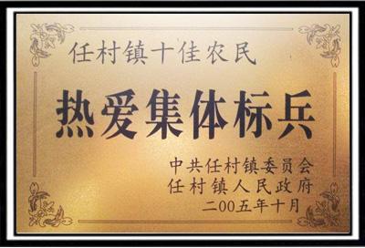 荣誉证书-林州市任村镇人民政府