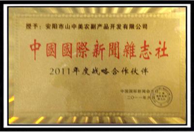 中國國際新聞雜志社2011年度戰略