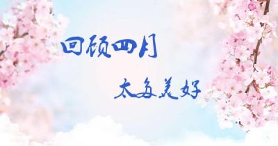 中企电子商务4月刊||春光烂漫 激情无限