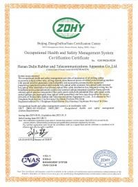 大林-职业健康证书英文