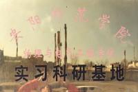 安阳师院实习基地