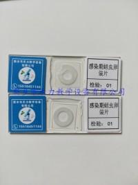 蛔虫卵装片  感染期蛔虫卵装片 寄生虫玻片