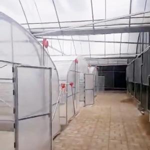 食用菌大棚层架