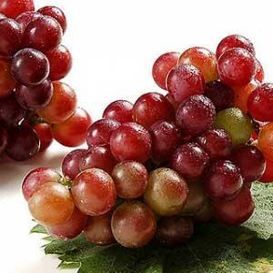 葡萄干制作方法
