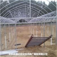 大棚钢结构骨架