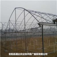 钢结构大棚骨架