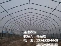 钢结构拱棚