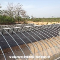 几字钢温室建造案例