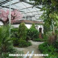 休闲观光温室