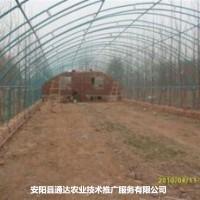 养殖温室亚搏直播app