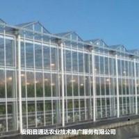 日光温室大棚价格