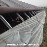 几字钢温室建造技术
