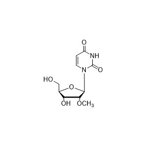 2'-修饰核苷