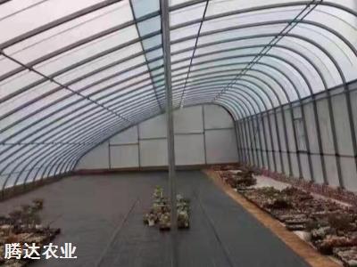 日光溫室大棚