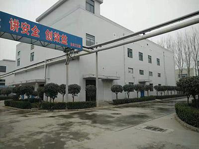 新辉药业厂区道路