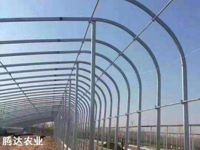 日光温室大棚