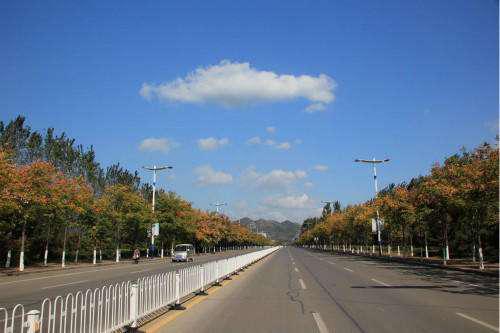 郑州金水区56条道路大中修工程
