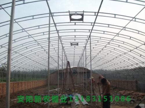 新日光温室