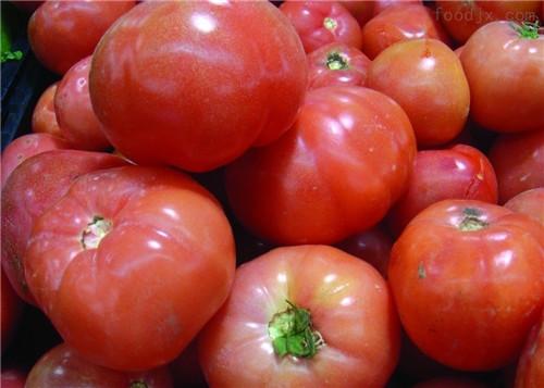 番茄,西红柿