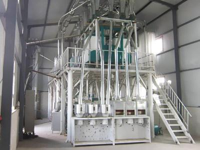 100吨级玉米加工设备