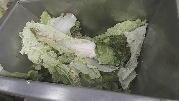 撕碎压榨白菜