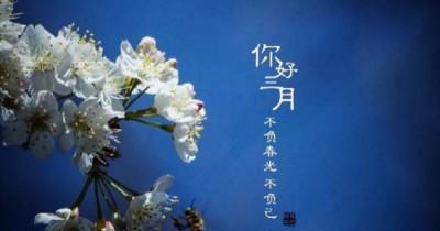中企電子商務||2021.2月刊