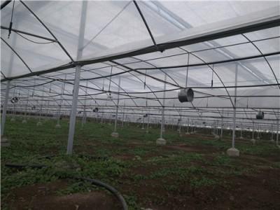 蔬菜大棚建設