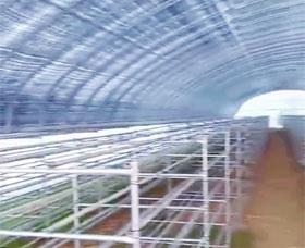 食用菌大棚層架