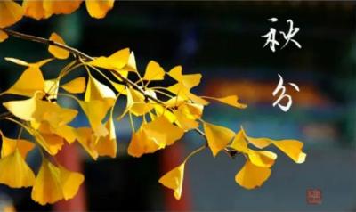 秋分,河南垣升冷暖设备有限公司与您共赏秋色!
